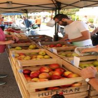 Top Reasons to go to Farmer's Market